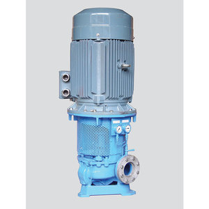 Centrifugal Pumps - Model CG